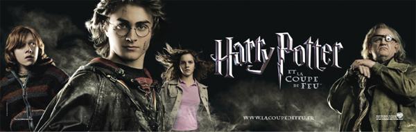 Affiche teaser française. Warner Bros.